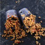 Pellet feeder